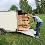 Easyline gesloten ballonwagen 350x140x145cm 1500kg speciaalbouw Aanhangwagens XXL West Brabant praktijk Aanhangwagens XXL West Brabant